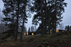 The lakefront villas that Studio Puisto Architects designed for the Uni Resort in Finland are wrapped in cross-laminated timber boards that mimic the tree trunks in the surrounding forest. #dwell #travel #microcabin #moderncabins #finland #prefab Modern Prefab Homes, Modern Cabins, Timber Boards, Desert Homes, Natural Wood Finish, Cozy Cottage, Architect Design, Finland, Remote