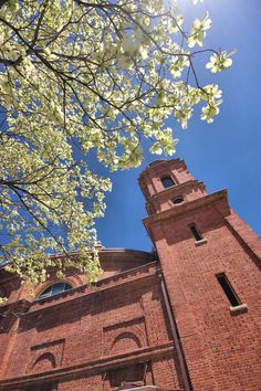 The Basilica of St Lawrence cathedral in downtown Asheville, NC on Easter Week with dogwoods. St Lawrence, Asheville Nc, Great Places, Monument Valley, Catholic, Cathedral, Places To Visit, Spirituality, Easter