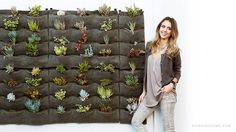 Even Jessica Alba believes in using wool felt for her wall full of succulents