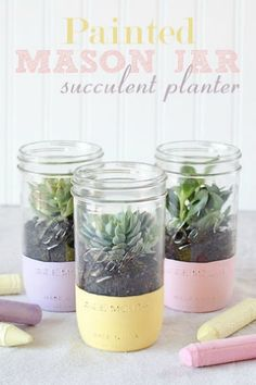 Painted mason jar succulent planter ~ I love these chalky colors