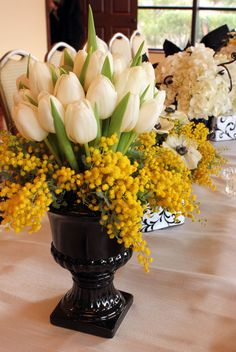 Tulips surrounded by a cloud of mimosa acacia!  www.bergeronsflowers.com