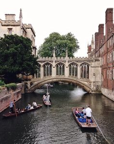 Close your eyes and dream of England - Cambridge, Cambridgeshire, England. Look at... New College, College Campus, City Of Cambridge, High Forehead, Most Romantic Places, Close Your Eyes, Around The Worlds, University, England