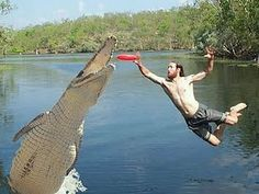 Ultimate Frisbee with Gators? ehhh.....