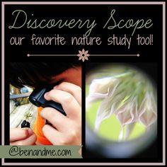 Discovery Scope: our favorite nature study tool #homeschool #nature #CharlotteMason