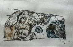 Drypoint slightly different colours!