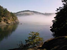 Washington State!