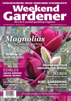 Magnificent magnolias! Issue 369 features everything you need to know about smaller varieties of magnolias perfect for smaller spaces.  Also find out how to grow Hebes and enter the competition to win an illustrative guide. Spring in to action with Andrew Maloy, who shows you how to prepare the vege gardens for the new season