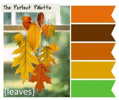 Beautiful fall color palette from The Perfect Palette