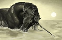 Last of His Kind by ~tschahri on deviantART ~ Black Unicorn