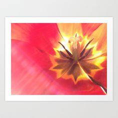 Sunny Tulip Center Art Print by Damn_Que_Mala - $16.00