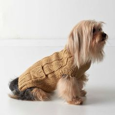 Cableknit Dog Sweater - inspired by the iconic fisherman sweater!
