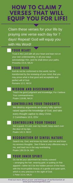 7 Scriptures to equip you for Life