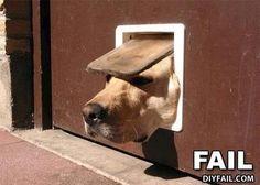 Funny Fails (16 Pics) | Vitamin-Ha