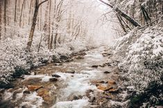 Paradise doesn't have to be tropical. ❄️ Great Smoky Mountains National Park during the winter Smoky Mountain National Park, Great Smoky Mountains, Rivers, National Parks, Paradise, Tropical, Winter, Outdoor, Winter Time