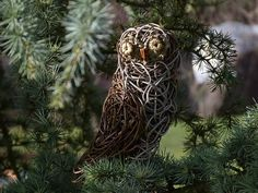 Chouette expérience @LVS2 Lion Sculpture, Owl, Statue, Animals, Owls, Birth, Wicker, Animales, Animaux