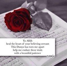 May Allah heal our broken hearts...