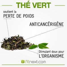 LE THÉ VERT : Pourquoi ne pas commencer la journée par une bonne tasse de thé vert ?   Riche en polyphénols et catéchines qui préviennent l'apparition de cancers et de maladie cardio-vasculaires.❤  C'est un stimulant doux : il augmente la concentration et l'énergie durablement. Pour en savoir plus, c'est ici : http://blog.fitnext.com/bienfaits-the-on-dit-verite?utm_campaign=buzz-reseaux-sociaux-fitnext&utm_source=pinterest.com&utm_medium=social&utm_content=thevert
