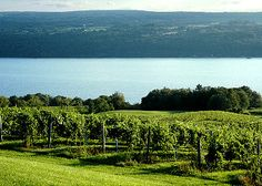 Seneca Lake - I was almost born here at a beach party!