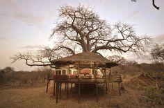 Tanzinian treehouse