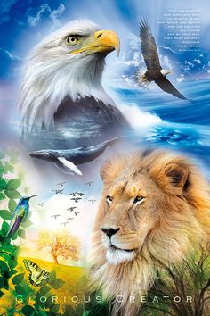 Inspirational, motivational christian art poster with bible verses, showing the beauty of creation. Order religious posters at: http://www.lifeposters.org