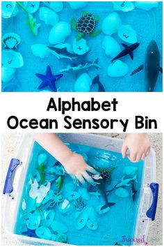 This alphabet ocean sensory bin is a great way to cool down this summer while learning letter identification, letters sounds and the ocean habitat.