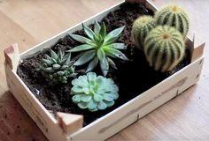Ne jetez plus vos caisses de clémentines en bois! Voici des idées décoratives et faciles pour les récupérer.