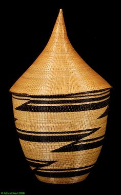 Google Image Result for http://www.africatoyou.com/photos/SX88.jpg