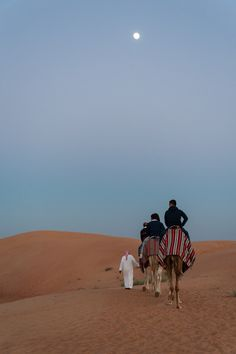 Wüstensafari in Dubai Abu Dhabi, Dubai, Safari, Far Away, Dream Life, Places To See, Bucket, Tours, Motivation