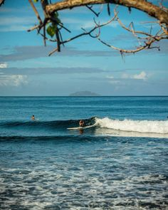 Want some uncrowded surf and beaches Rincón still has them. Start planning your trip now for #Thanksgiving and #Christmas. #hurricanemaria #loverinconpr #mariarelief #puertoricostrong #mariarecovery #helppuertorico by @lucasmoorephoto @rinconsavage413