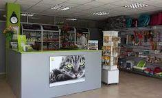 Resultado de imagem para decoracion veterinarias