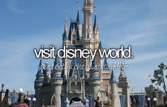 *every disney world