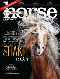 September 2016: Photographing Icelandic Horses; Sidesaddle Jumping World Record; Safe Living Spaces for Your Horse