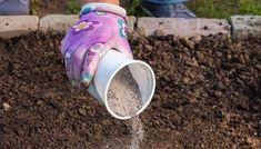 Дневник : LiveInternet - Российский Сервис ОнРSummer House Garden, Home And Garden, Eco Garden, Vegetable Storage, Garden Borders, Small Farm, Farm Gardens, Bastille, Organic Gardening