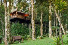 Casa na Árvore em Monte Verde (MG)Casa na Árvore