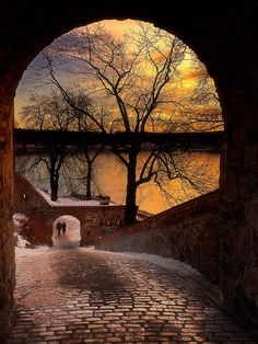 steep cobbled path to the lake, sunrise, sunset, bricks, wall, water, trees, clouds, reflections, beautiful, view, panorama, Mother Nature, breathtaking, architechture, curves, photo.