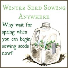 Discover the brilliance of winter sowing. Seedlings care for themselves and are already hardened-off when you're ready to put them in the ground.