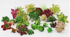 Choosing wholesale simulation succulents artificial flowers ornaments mini green artificial succulents plants garden decoration online? DHgate.com sells a variety of garden decorations for you. Buy now enjoy cheap price.