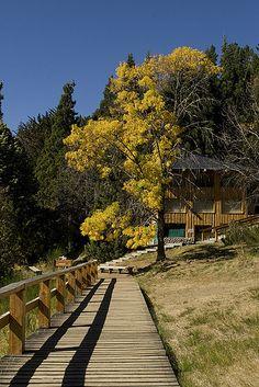 Ilha Vitoria em Bariloche por Melissa Toledo. #Bariloche #Viagem #Argentina #argentinatotal