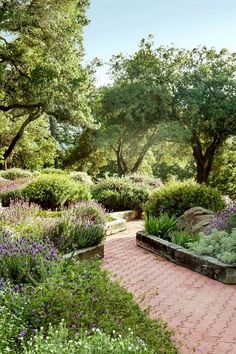 Impressive 25+ Most Amazing Mediterranean Garden Design Ideas For Your Backyard https://decoor.net/25-most-amazing-mediterranean-garden-design-ideas-for-your-backyard-8890/