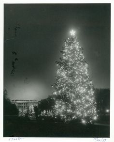 Our Presidents • The National Christmas Tree with the White House...