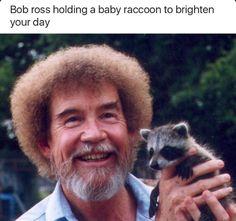 BONUS: Here's Bob Ross and a baby raccoon, because you've earned it. BONUS: Here's Bob Ross and a baby raccoon, because you've earned it. Pinturas Bob Ross, Baby Animals, Funny Animals, Cute Animals, Funny Pets, Baby Racoon, Bob Ross Quotes, Happy Little Trees, Bob Ross Paintings