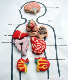 Anatomically correct edibles is the theme of Eat Your Heart Out, a London-based pop-up cake shop.