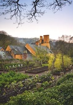 NEW series: A year at Allt-y-bela | Gardens Illustrated