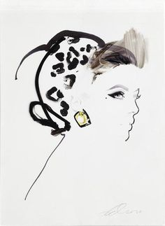 illustration by David Downton
