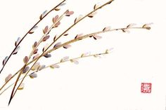 pussy willows in watercolor - Google Search