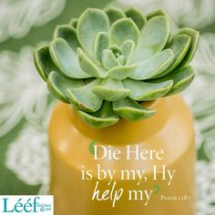 Psalm 118, Psalms, Afrikaans Quotes, Hart, Love Me Quotes, Center Stage, Note To Self, Prayer, Art Projects