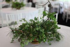 Emily Thompson foraging for native floral arrangements via Gardenista  - pine, blueberries, oak