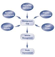 Interim Management provide you the best way for making high profits by short term investments.