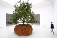 Céleste Boursier-Mougenot Plants a kinetic forest, FR Biennale Venezia 2015