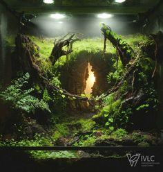 Hazy Denizens Platz im weltweiten Vivarium Contest IVLC – aquascaping Planted Aquarium, Aquarium Aquascape, Aquarium Landscape, Nature Aquarium, Gecko Vivarium, Gecko Terrarium, Terrarium Reptile, Aquarium Terrarium, Water Terrarium